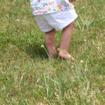 Cum protejăm copiii de înțepăturile de artropode